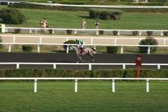 Paardenkoersrenbaan stock afbeelding