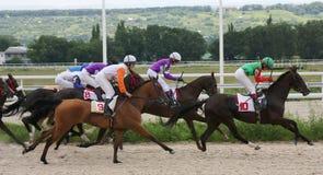 Paardenrennen. Royalty-vrije Stock Foto's