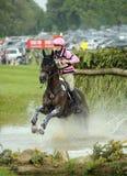Paardenrennen Stock Foto's