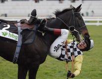 Paardenrennen Stock Afbeelding