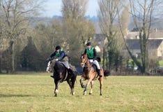 Paardenrennen Royalty-vrije Stock Fotografie