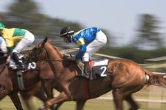 Paardenrennen Royalty-vrije Stock Afbeeldingen