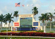 Paardenrennen bij park Gulfstream dichtbij Miami Royalty-vrije Stock Foto