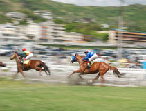 Paardenrennen in Mauritius Stock Afbeelding