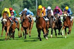 Paardenrennen in Milaan, Italië Stock Fotografie