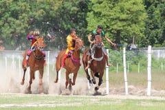 Paardenrennen in sumba Royalty-vrije Stock Foto