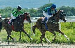 Paardenrennen voor de prijs ter ere van de merrie Grote Tric royalty-vrije stock foto's