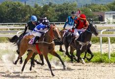 Paardenrennen voor de prijs van Grote alle-Rus stock afbeeldingen