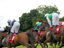 Paardenrennen in York Royalty-vrije Stock Foto's