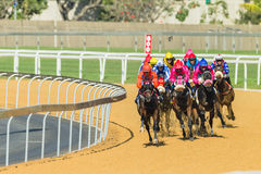 Paardenrennenactie Royalty-vrije Stock Foto's