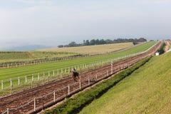 Paardenrennenruiters die Spoor opleiden Royalty-vrije Stock Afbeelding