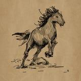 Paardhand getrokken realistische schets op ambacht Stock Illustratie