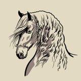 Paardhoofd met manen Hand getrokken vector royalty-vrije illustratie