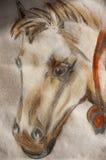 Paardhoofd met pastelkleurpotloden dat wordt getrokken Stock Foto