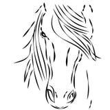 Paardhoofd op witte achtergrond Stock Fotografie