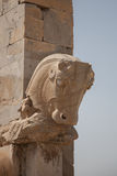 Paardhoofd, persepolis Royalty-vrije Stock Afbeeldingen