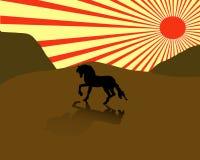 Paardillustratie Stock Foto