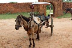 Paardkar met kleine wagen in oude Bagan, Myanmar Stock Fotografie