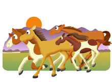 Paardkudde stock illustratie