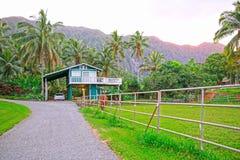 Paardlandbouwbedrijf buiten in Nieuw Zeeland royalty-vrije stock foto