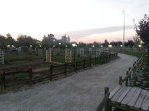 Paardlandbouwbedrijf het lopen gebiedsnacht S3 Stock Afbeeldingen
