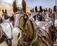 Paardledenpoppen Stock Afbeeldingen