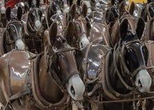 Paardledenpoppen Royalty-vrije Stock Fotografie
