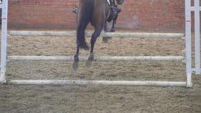 Paardlooppas en sprongen door een barrière bij de sportconcurrentie Sluit omhoog van paardvoeten het galopperen Professionele joc stock footage