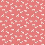 Paardlooppas, Hop, Geïsoleerde Galop naadloos Royalty-vrije Stock Afbeelding
