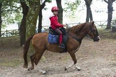 Paardmarkt Royalty-vrije Stock Afbeelding