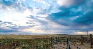 Paardpen in Colorado stock video