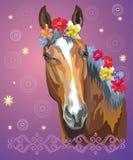 Paardportret met flowers7 Royalty-vrije Illustratie