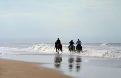 Paardrijden Stock Foto's