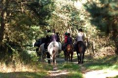 Paardrijden Royalty-vrije Stock Afbeeldingen