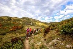 Paardrijden in de bergen stock afbeelding