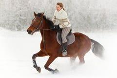 Paardrijden in de winter Stock Afbeeldingen
