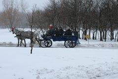 Paardrijden in een vervoer Royalty-vrije Stock Afbeeldingen