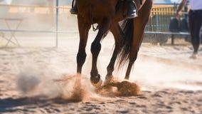 Paardrijden in het zand op de ruiterschool royalty-vrije stock afbeelding