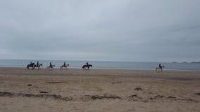 Paardrijden op het strand Royalty-vrije Stock Foto's