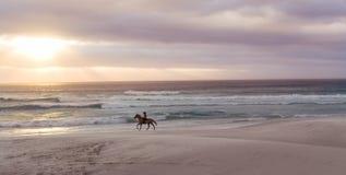 Paardrijden op het strand bij zonsondergang stock foto