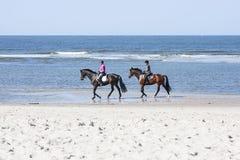 Paardrijden op het Strand, redactie Stock Fotografie