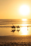Paardrijden op strand bij zonsondergang Stock Afbeelding