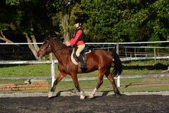 Paardrijdenkind in dressuurarena Stock Foto's