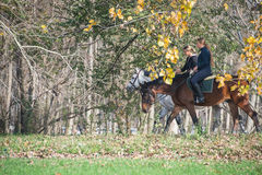 Paardrit Stock Fotografie