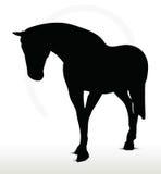 Paardsilhouet stock illustratie