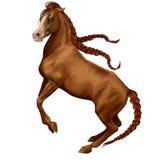 Paardspel royalty-vrije illustratie