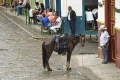 Paardstad Stock Afbeelding