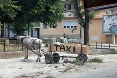 Paardtaxi in Debar, Macedonië Royalty-vrije Stock Foto