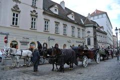 Paardvervoer Stock Afbeelding