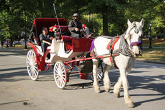 Paardvervoer dichtbij Central Park op 59ste Straat in Manhattan Stock Fotografie